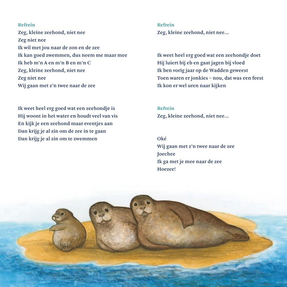 Zeg Kleine Zeehond Prentenboek Voor Peuters En Kleuters