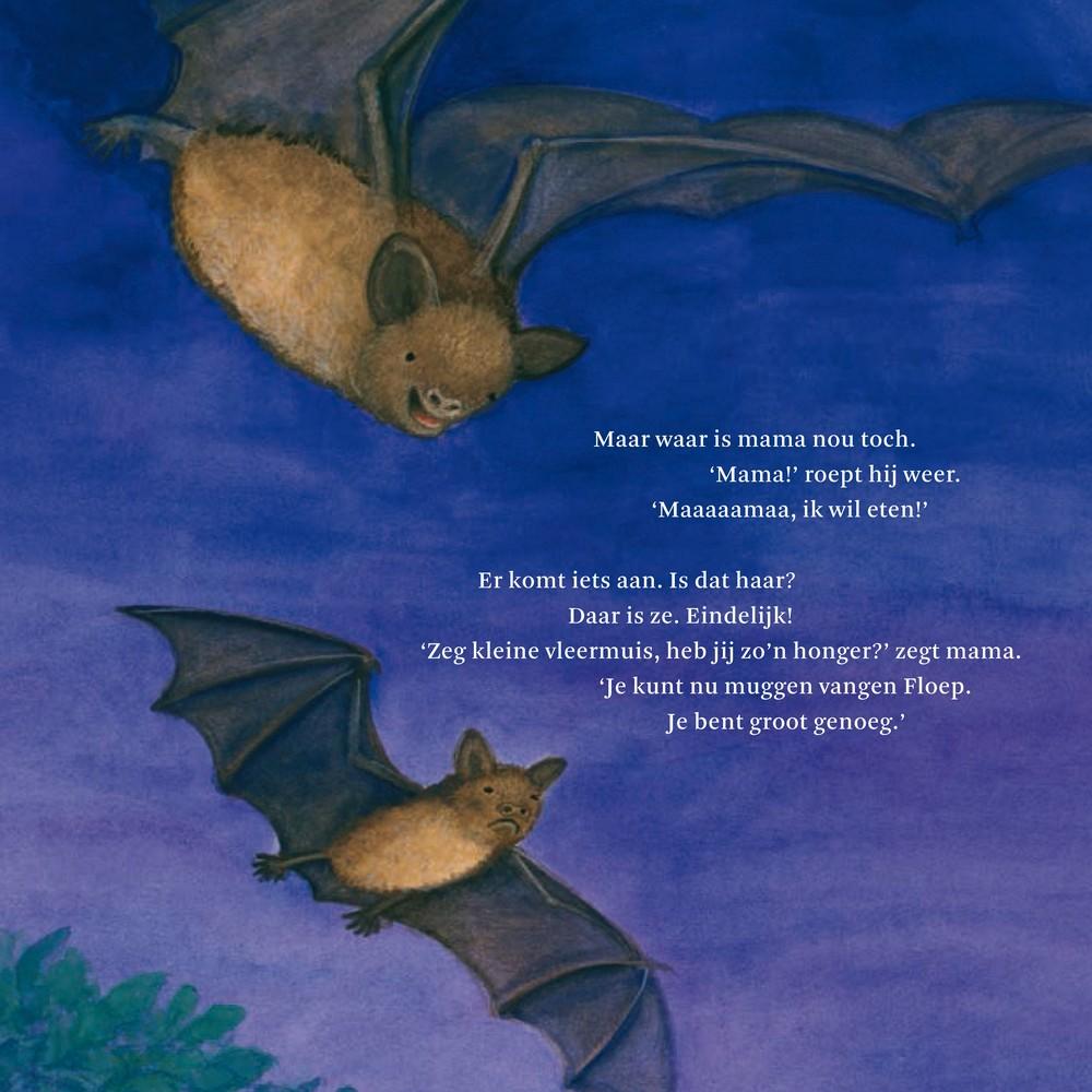 zeg kleine vleermuis prentenboek voor peuters en kleuters